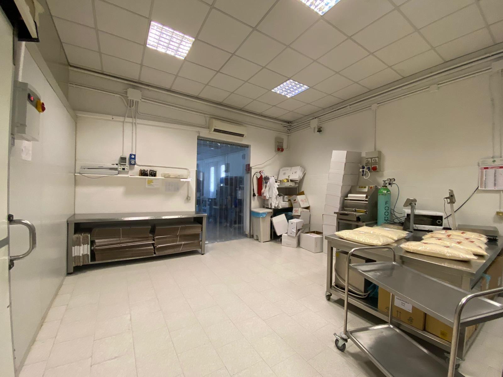 Complesso uso industriale vendita a Piacenza